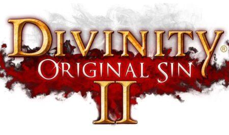Divinity Original Sin 2 – Video Game Review